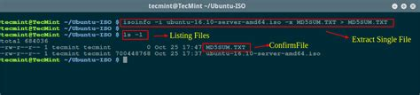 ways  extract  copy files  iso image  linux