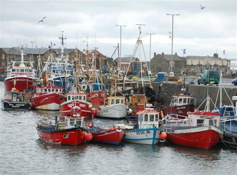fishing boat trips northern ireland dublin fishing charters coach minibus hire dublin o