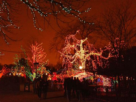 lights lincoln park zoo winter things to do in chicago zoo lights at lincoln park
