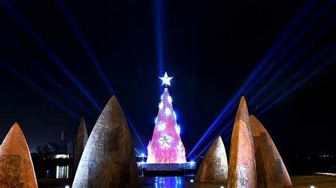 geelong s new christmas tree shows its magical side at