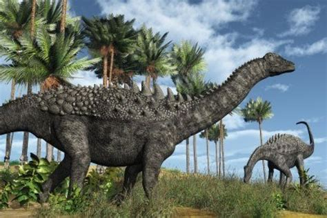 Google Images Dinosaurs | dinosaurs google search dinosaurs pinterest
