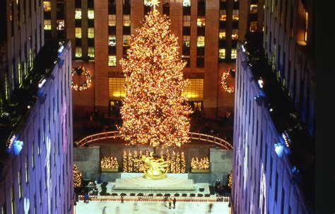 the 1998 rockefeller center christmas tree lauren