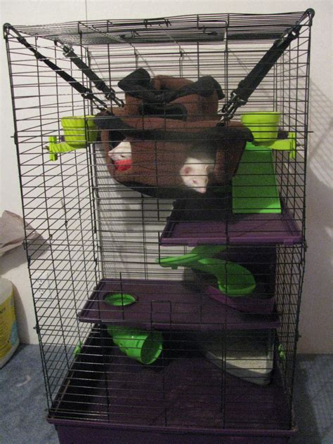 My Is A Cage Ferrets Cage The Ferret Zone
