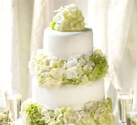 basic wedding cake designs simple elegance wedding cake recipe food