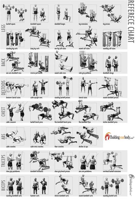 10 best images of free printable workout charts exercises 10 best images of free printable workout charts exercises