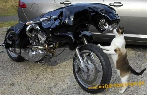 Motorrad Verkleidung Kitten by Custom Bikes Jaguar Motorrad Mit Katze Die Besten 100