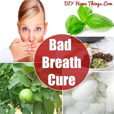 bad breath cure cure bad breath naturally diy home things