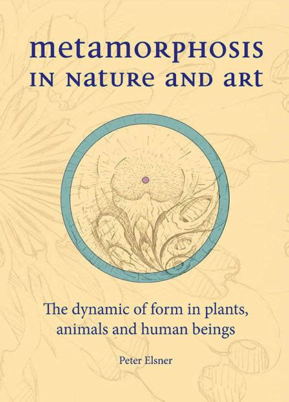nature s open secret introductions to goethe s scientific writings cw 1 ebook steiner science nature goethean studies