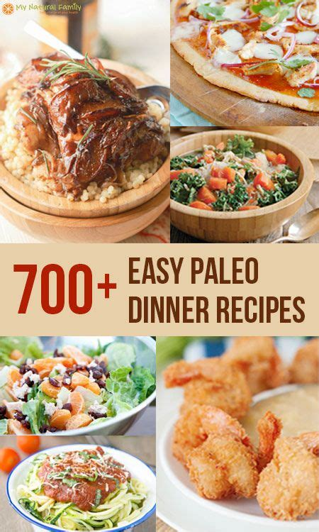 the paleo easy vegetarian recipes for a paleo lifestyle books 727 easy paleo dinner recipes paleo dinner paleo and