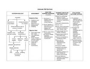 Nursing diagnosis urinary retention application of nanda review