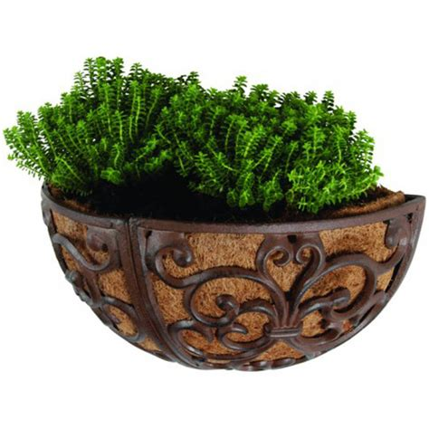 Cast Iron Wall Planter by Cast Iron Wall Planter 36cm By Garden Selections