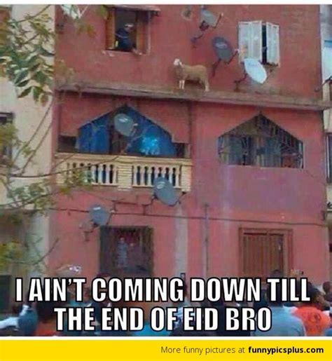 Eid Memes - funniest eid mubarak pictures funny pictures