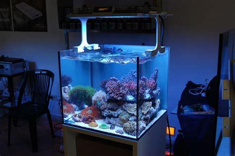 nano reef aquarium lighting xaqua nano reef led reef aquarium light
