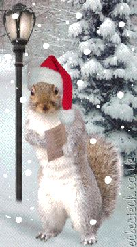 ill  home  christmas christmas squirrel