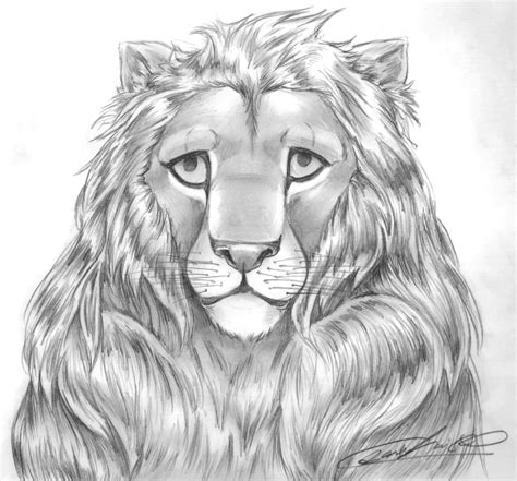 drawings hard sketches drawing a lion is hard by sinnabelle on deviantart