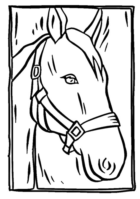 coloring pictures of horses heads coloring pages clipart best