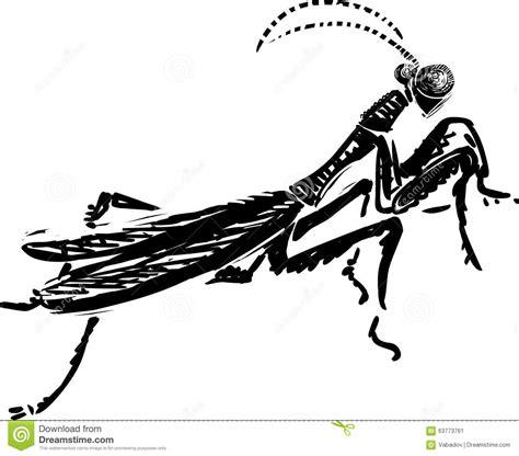 mantide religiosa porta fortuna 133 praying mantis clipart clipart fans