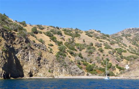 catalina island shore boats willow cove on catalina island avalon ca california