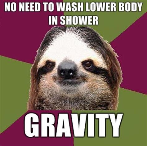 Make A Sloth Meme - 50 funny sloth memes that make you laugh golfian com