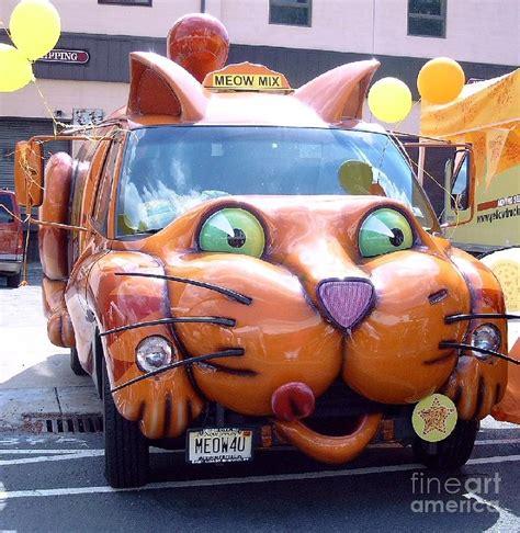 Kat Auto by Cat Car Meow Photograph By David Karasow