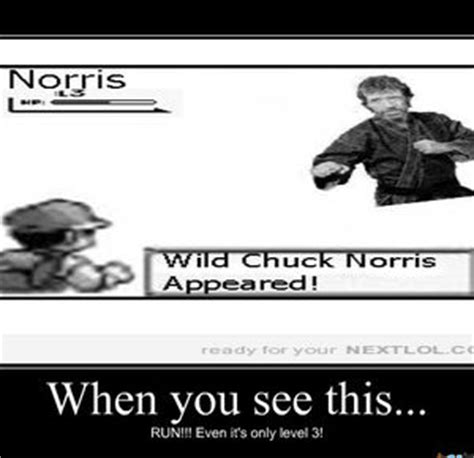 Chuck Norris Pokemon Memes - meme center cookiequeen profile