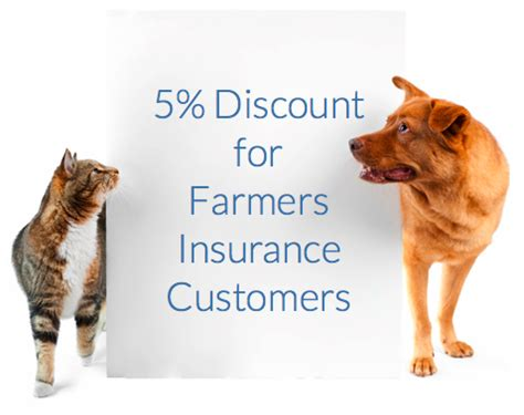 puppy insurance understanding your pet insurance coverage trowbridge insurance