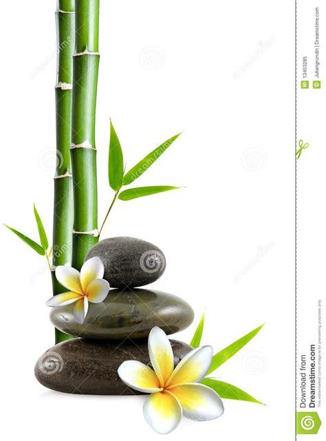 imagenes zen bambu fiori e pietre fotografia stock libera da diritti