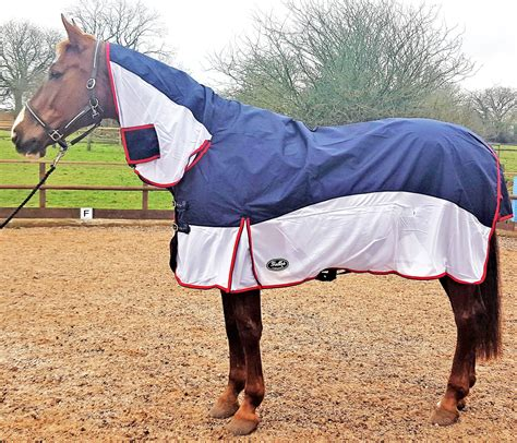 Cheap Fly Rugs For Horses by Gallop Dual 2 In 1 Turnout Fly Rug Fast Tack Direct