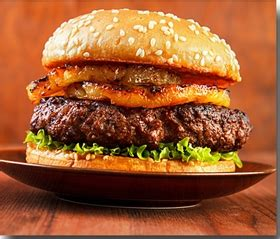 1/2 lb. bison patties grass fed bison meat, organic