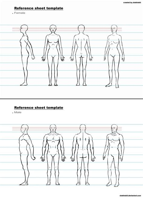 character template character design sheet template search anatomy
