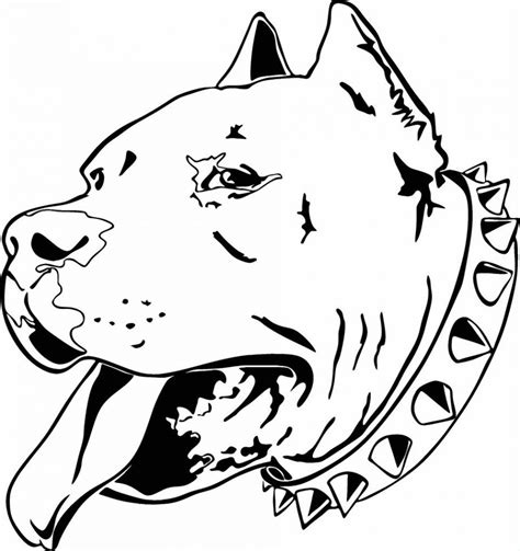 coloring pages pitbull puppies pitbull dog coloring pages coloring home