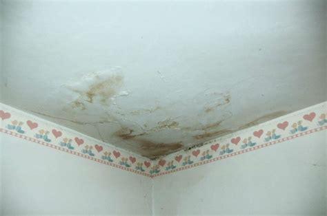 infiltrazioni acqua terrazzo danni da infiltrazioni di acqua nei condomini ecco le
