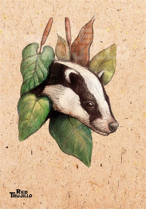 badger tattoo badger design by redtrujillo on deviantart