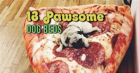 why do dogs hump their bed these 13 cool dog beds will give your fur kids the best