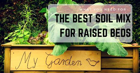 best soil for raised beds what you need for the best soil mix for raised beds sumo