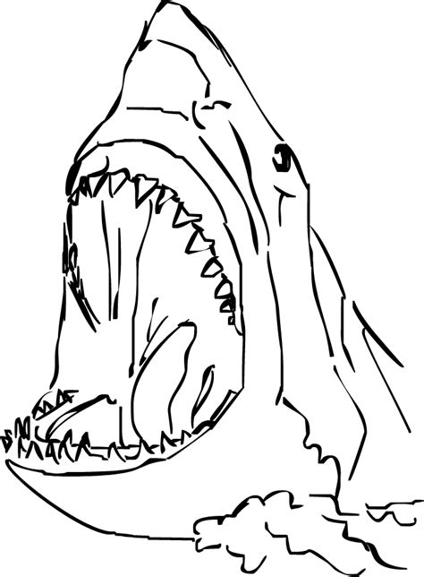 sharks a coloring book books unity the dunwich not quite so horrible
