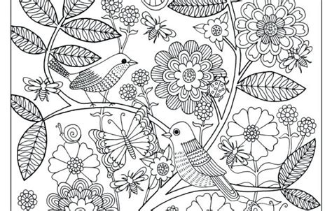 flower garden coloring pages for adults garden pictures for coloring flower garden color pages
