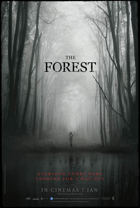 film horor forest the forest 2016 movies film cine com