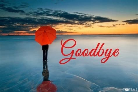 goodbye quotes  friends messages images  facebook whatsapp picture sms txtsms