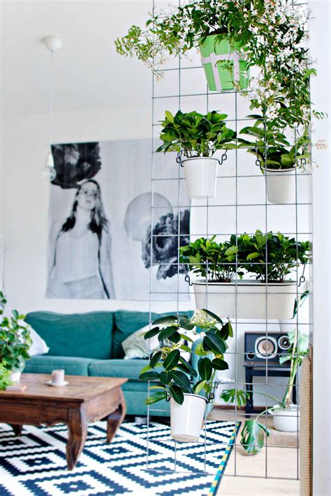 indoor garden ideas  wannabe gardeners  small