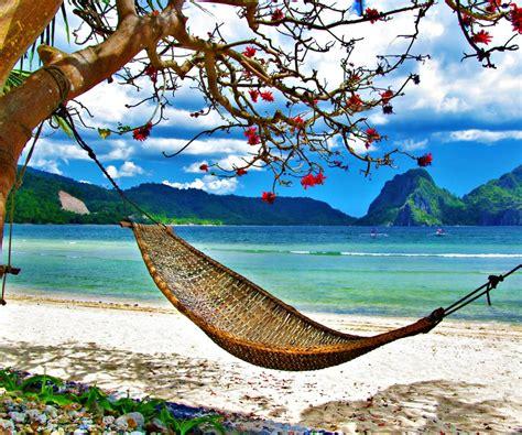hamaca de playa las fotos alucinantes hamaca en la playa