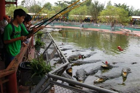 theme park vietnam at this amusement park in vietnam kids can feed live
