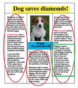 News For Dogs Book Report by Text Marking Explained For Primary School Parents Theschoolrun