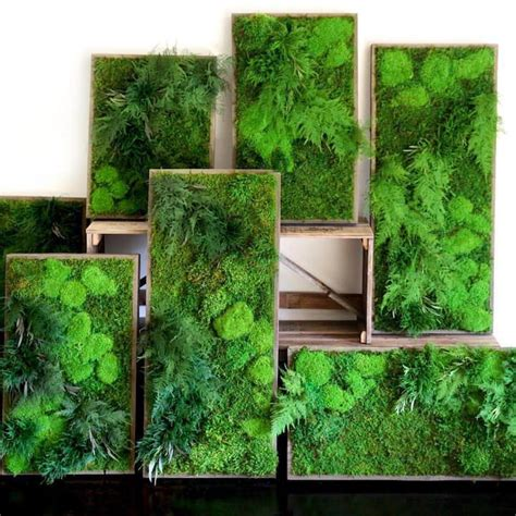 17 best ideas about moss wall on moss