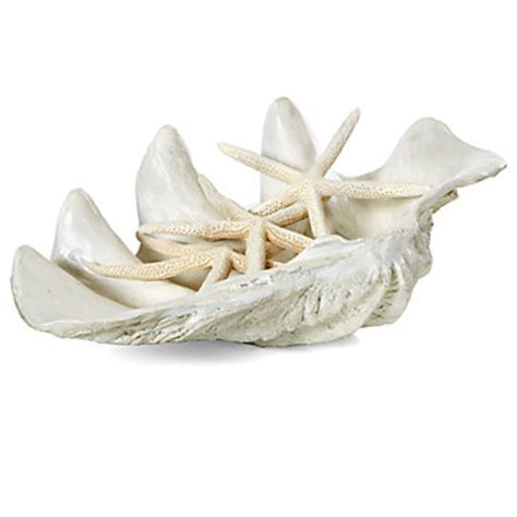 Home Decor For Small Apartment Atlantis Large Clam Shell Summer Decor Z Gallerie