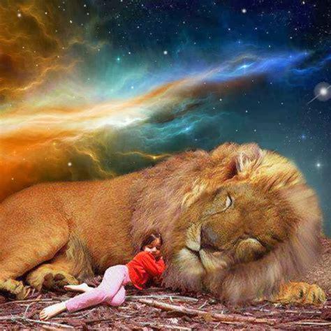 imagenes con leones cristianas el le 243 n de la tribu de jud 225