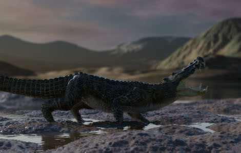 Taring Babi Sepasang 3 apa ini apa itu 6 buaya yang hidup di zaman dinosaurus