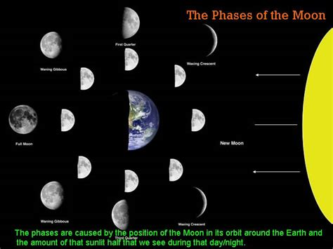 phases of the moon diagram diagram of the moon faces atrophy diagram elsavadorla