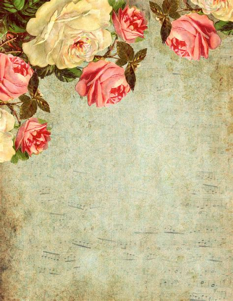 Roses Essay by Lilac Lavender You The Roses