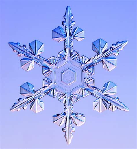 google images of snowflakes real snowflake images szukaj w google snowflake